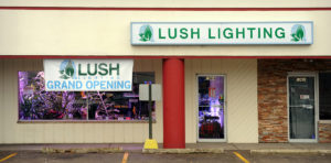 Lush Lighting Storefront