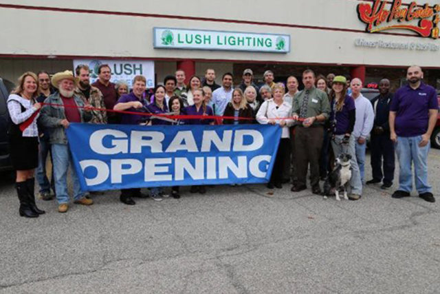 Lush Lighting Store Grand Opening, November 2014